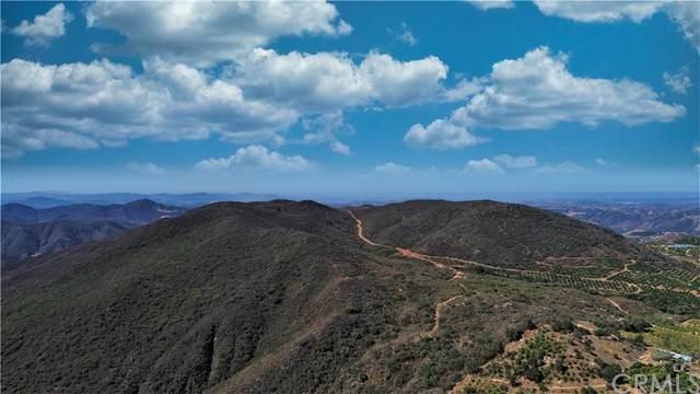 0 Calle Uva, Temecula, CA 92590 (#SW21130010) :: Steele Canyon Realty