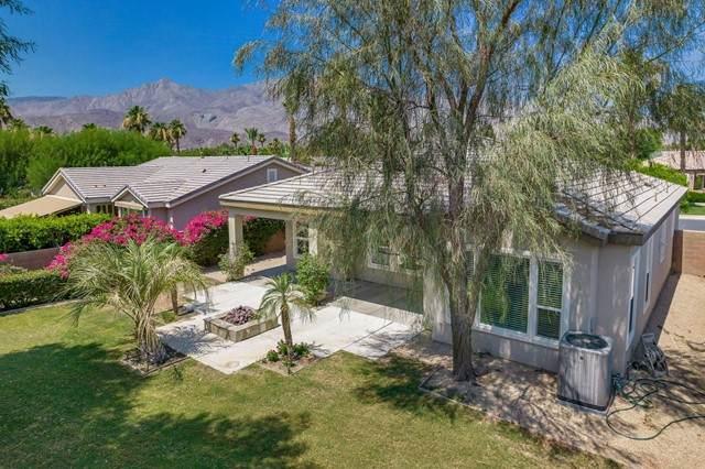 61320 Cactus Spring Drive, La Quinta, CA 92253 (#219063605DA) :: Pam Spadafore & Associates