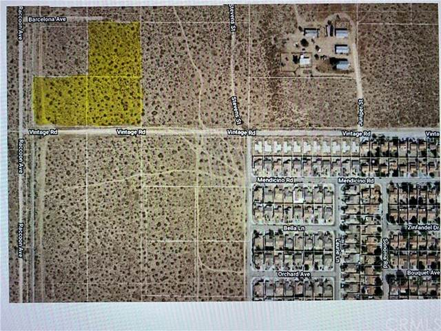 0 Vintage Rd @ Raccoon Ave, Adelanto, CA 92301 (#SB21131205) :: Amazing Grace Real Estate | Coldwell Banker Realty