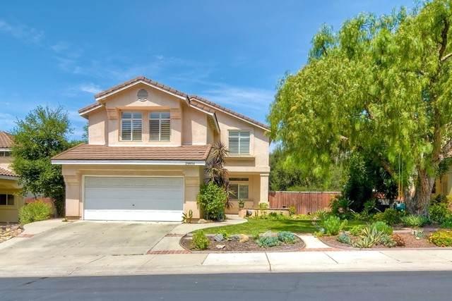 29834 Platanus Dr, Escondido, CA 92026 (#210016757) :: The Laffins Real Estate Team