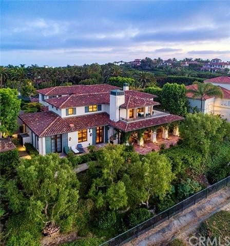 5 Canyon Rim, Newport Coast, CA 92657 (#NP21130150) :: Mark Nazzal Real Estate Group