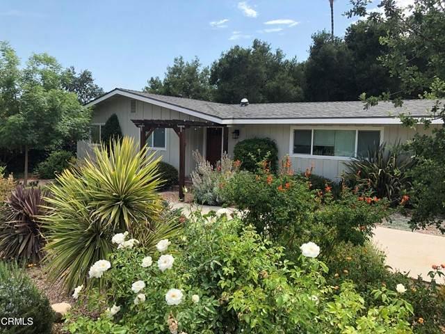 807 Daly Road, Ojai, CA 93023 (#V1-6523) :: RE/MAX Empire Properties