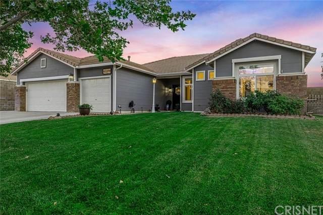 43319 Haven Place, Lancaster, CA 93536 (#SR21132221) :: Go Gabby