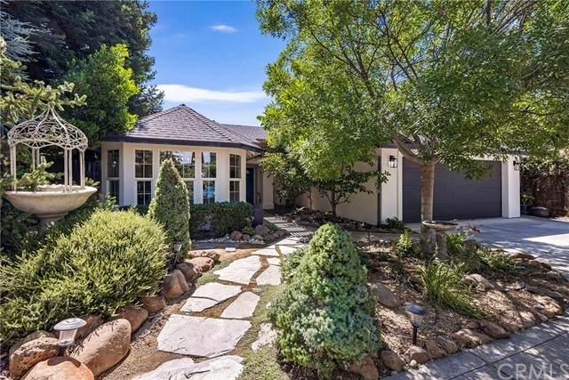 19 Upper Lake Court, Chico, CA 95928 (#SN21127056) :: RE/MAX Empire Properties