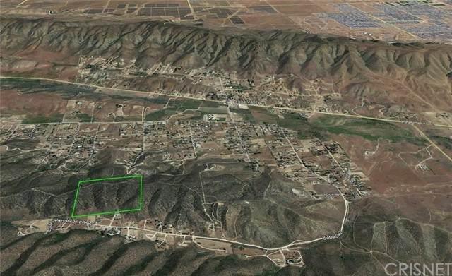 1 Vac/Vic 95th Stw/92Nd Stw, Palmdale, CA 93551 (#SR21132384) :: Zember Realty Group