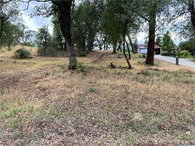119 Pierpont Drive, Oroville, CA 95966 (#OR21132476) :: RE/MAX Empire Properties