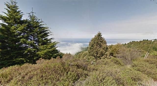 200 Hemlock Road, Shelter Cove, CA 95589 (#OC21133090) :: Steele Canyon Realty
