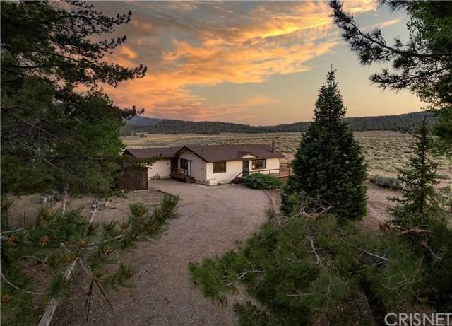 9312 Deer, Frazier Park, CA 93225 (#SR21132186) :: Swack Real Estate Group | Keller Williams Realty Central Coast