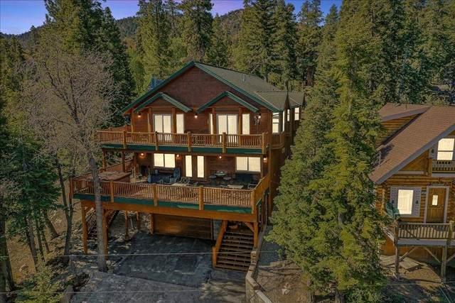 43439 Shasta Road, Big Bear, CA 92315 (#219063773DA) :: Realty ONE Group Empire