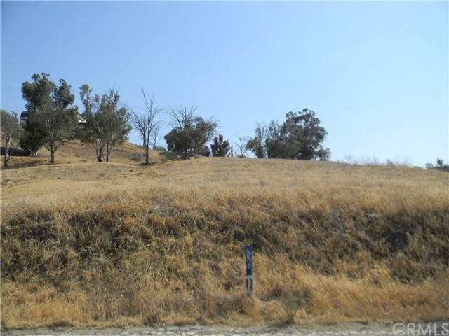 0 Strickland Ave, Lake Elsinore, CA 92530 (#SW21133871) :: RE/MAX Empire Properties