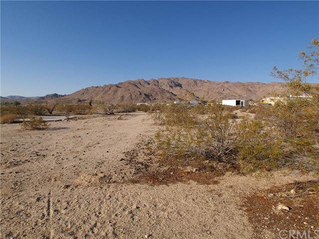 3 Old Dale Rd, 29 Palms, CA 92277 (#JT21133977) :: Powerhouse Real Estate