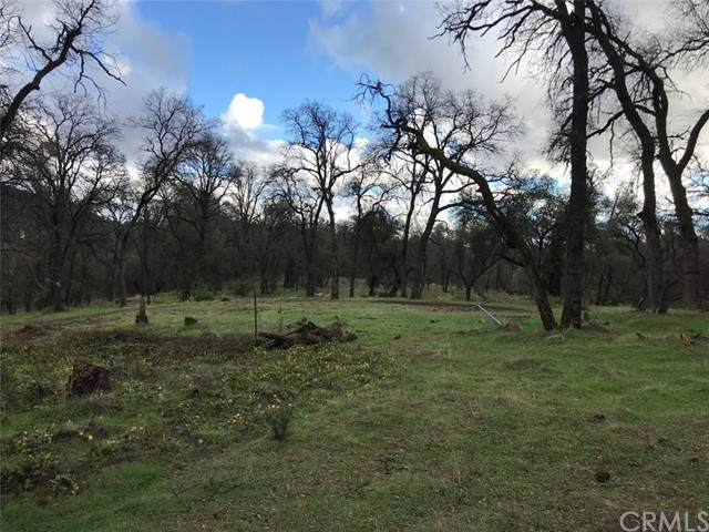 0 State Hwy, 49, Sonora, CA 95370 (#NP21134005) :: Powerhouse Real Estate