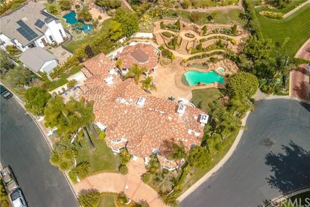 28572 Paseo Zorro, San Juan Capistrano, CA 92675 (#NP21134001) :: Pam Spadafore & Associates