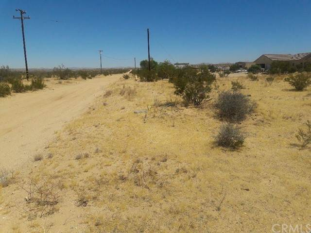 4725 Pearl Springs Avenue, 29 Palms, CA 92277 (#SW21134161) :: Team Forss Realty Group