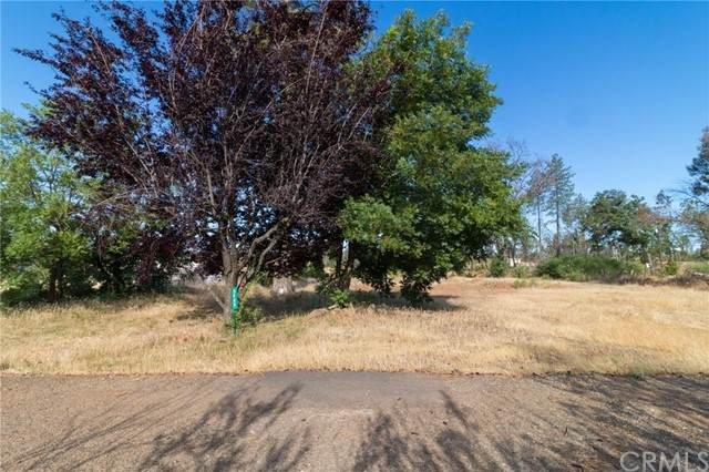 5689 Scotty Lake Drive, Paradise, CA 95969 (#PA21122315) :: Coldwell Banker C&C Properties