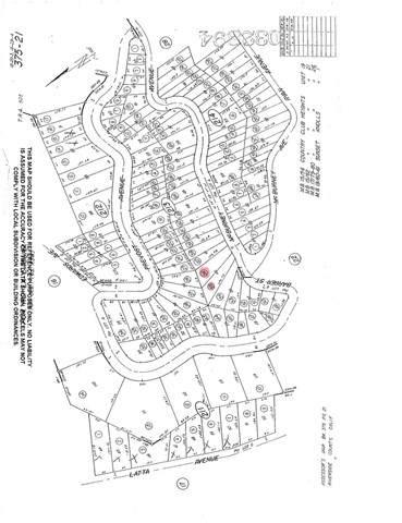 0 Mc Burney Avenue, Lake Elsinore, CA 92530 (#SW21129818) :: REMAX Gold Coast