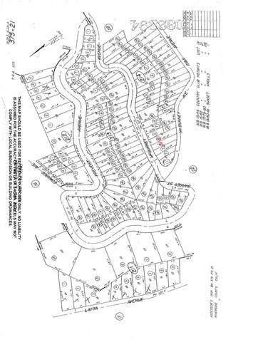 0 Mc Burney Avenue, Lake Elsinore, CA 92530 (#SW21129846) :: REMAX Gold Coast
