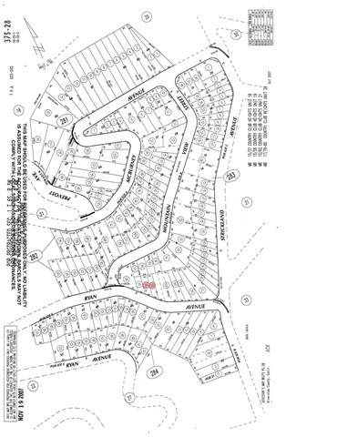 0 Ryan Avenue, Lake Elsinore, CA 92530 (#SW21129873) :: REMAX Gold Coast