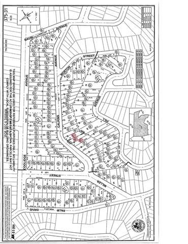 0 Calkins Avenue, Lake Elsinore, CA 92530 (#SW21129909) :: REMAX Gold Coast