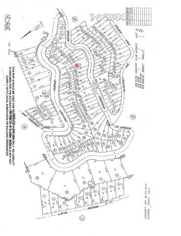 0 Mc Burney Avenue, Lake Elsinore, CA 92530 (#SW21133671) :: Pam Spadafore & Associates