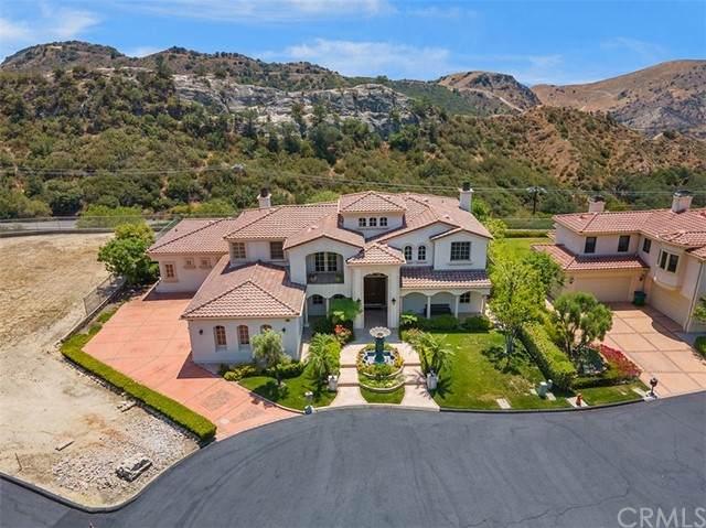 18041 Merlin Street, Silverado Canyon, CA 92676 (#OC21134263) :: Pam Spadafore & Associates