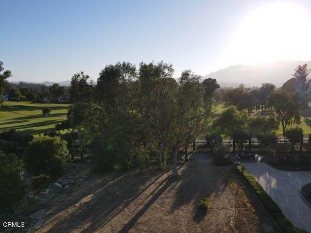 726 Country Club Road, Ojai, CA 93023 (MLS #V1-6615) :: CARLILE Realty & Lending