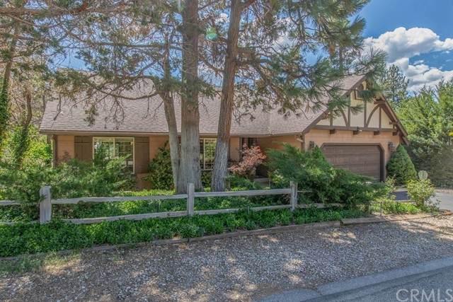 1040 Mount Whitney Drive, Big Bear, CA 92314 (#EV21135560) :: RE/MAX Masters