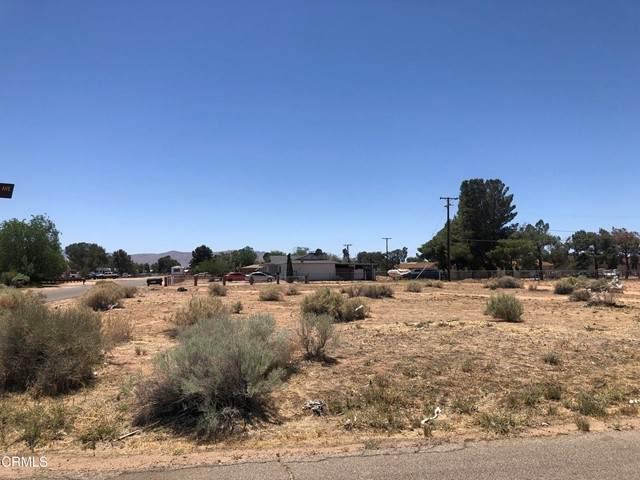 0 Mochican Avenue, Apple Valley, CA 92307 (#P1-5373) :: Frank Kenny Real Estate Team