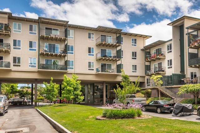 815 Humboldt Street #207, San Mateo, CA 94401 (#ML81850306) :: Powerhouse Real Estate