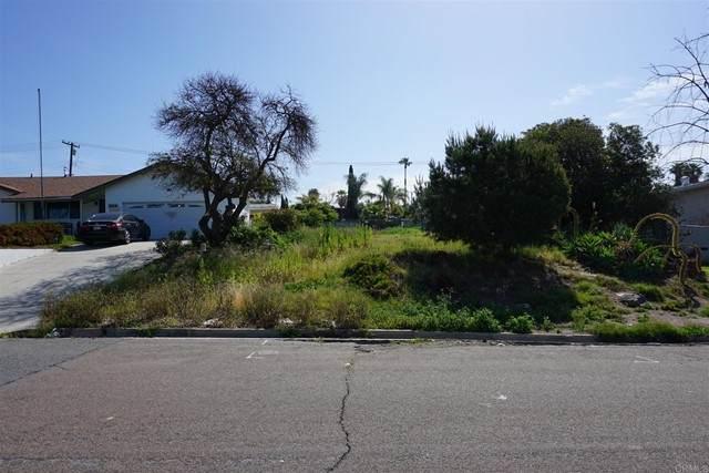 919 Concepcion Avenue, Spring Valley, CA 91977 (#PTP2104374) :: Compass