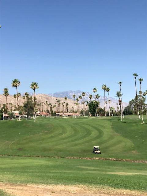 12 El Toro Dr Drive, Rancho Mirage, CA 92270 (#219064201DA) :: The Kohler Group