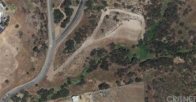 0 Vac/Wagon Wheel Rd/Vic Woolsey, Agua Dulce, CA 91350 (#SR21142641) :: Steele Canyon Realty