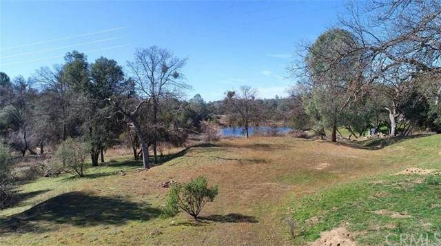 0 3.34 AC Old Corral Road - Photo 1