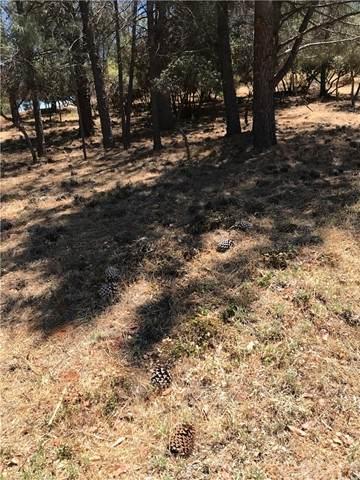 9745 Mount Hood Way, Kelseyville, CA 95451 (#LC21145332) :: Mark Nazzal Real Estate Group