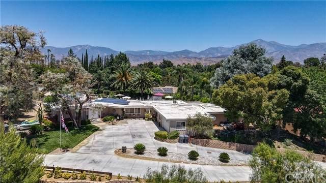 30924 Palo Alto Drive - Photo 1