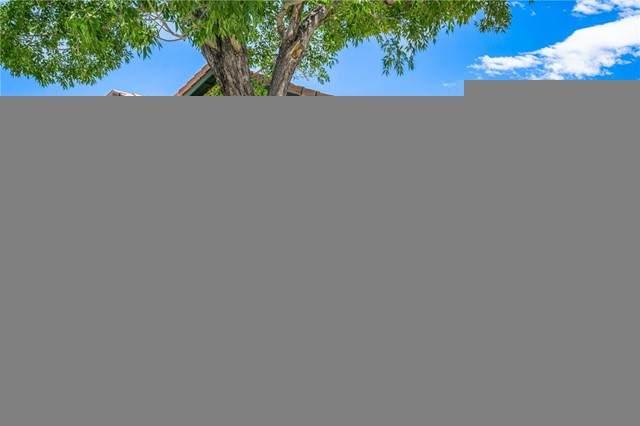36922 Bernardin Drive - Photo 1