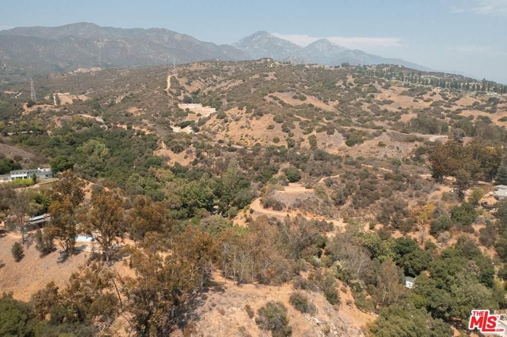 4574 Live Oak Canyon - Photo 1