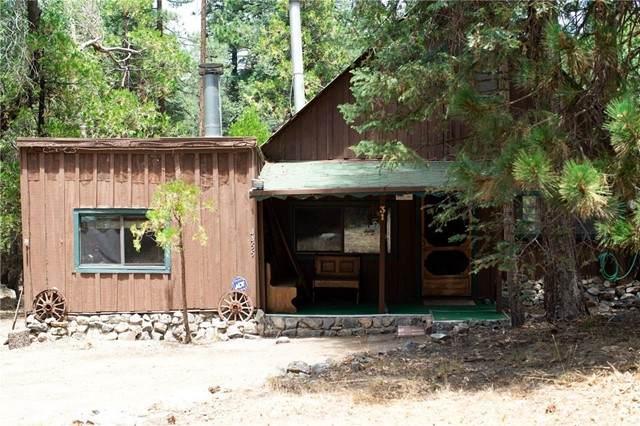 31 Barton Flats Trail, Angelus Oaks, CA 92305 (#SW21147782) :: Robyn Icenhower & Associates