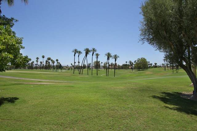 791 Montana Vista Drive, Palm Desert, CA 92211 (#219064608DA) :: Mark Nazzal Real Estate Group