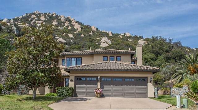 17101 Woodson View Lane, Ramona, CA 92065 (#NDP2107971) :: Doherty Real Estate Group