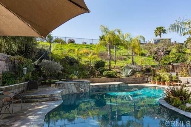 5955 Rio Valle Drive, Bonsall, CA 92003 (#NDP2107983) :: Jett Real Estate Group