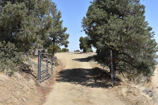 7910 Homeridge Drive - Photo 1