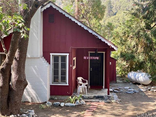 40998 Valley Of The Falls Drive, Forest Falls, CA 92339 (#EV21150057) :: Robyn Icenhower & Associates
