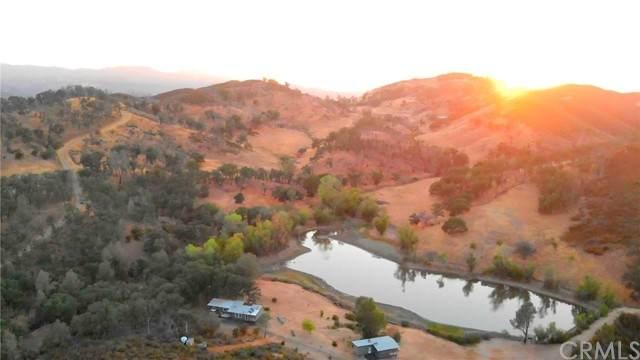 22044 Morgan Valley Road, Lower Lake, CA 95457 (#LC21149832) :: Corcoran Global Living