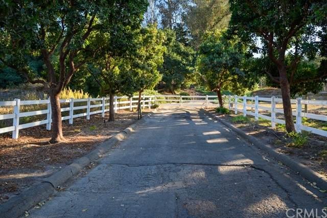 1588 Verde Canyon Road, Arroyo Grande, CA 93420 (#PI21151427) :: Latrice Deluna Homes