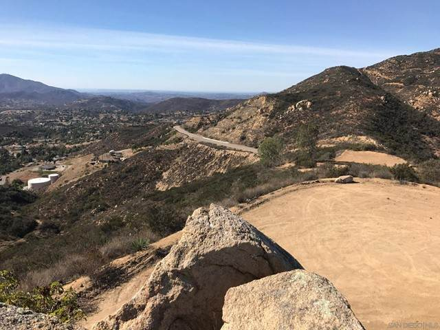15239 Skyline Truck Trail, Jamul, CA 91935 (#210019517) :: Steele Canyon Realty