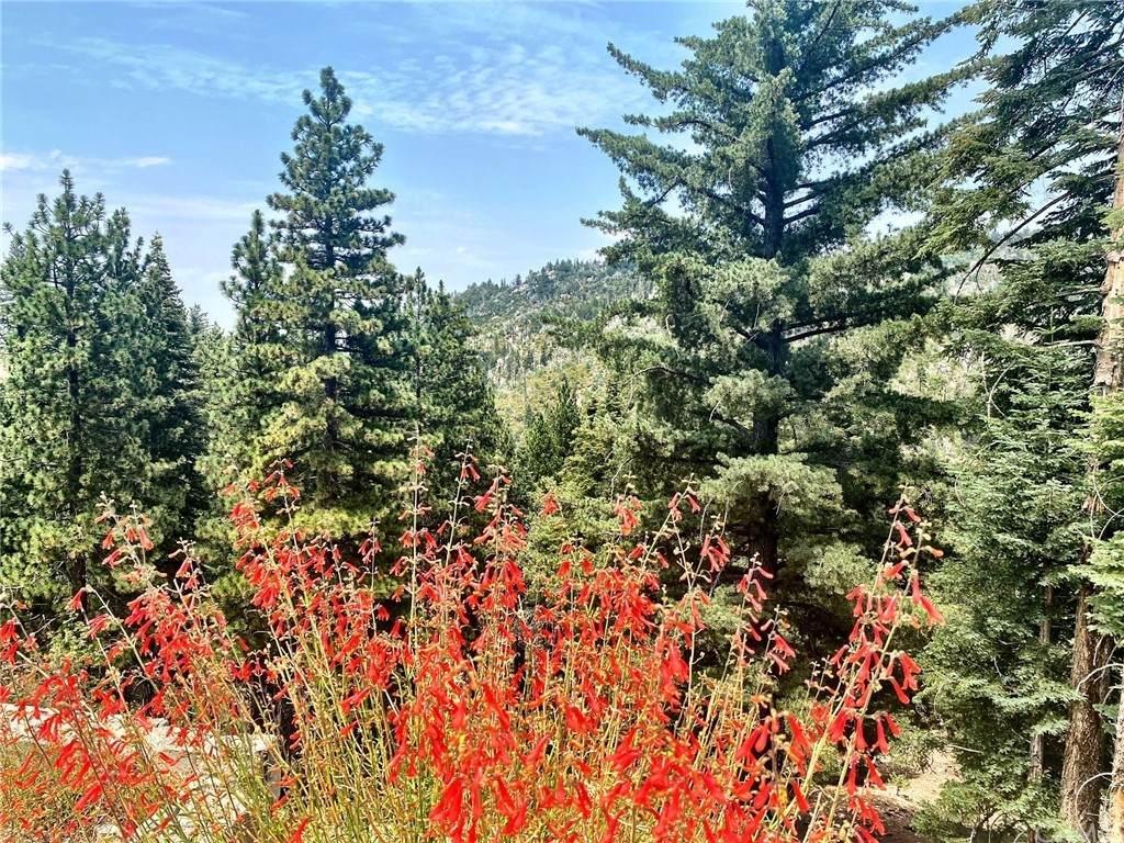 2361 Deep Creek Drive - Photo 1