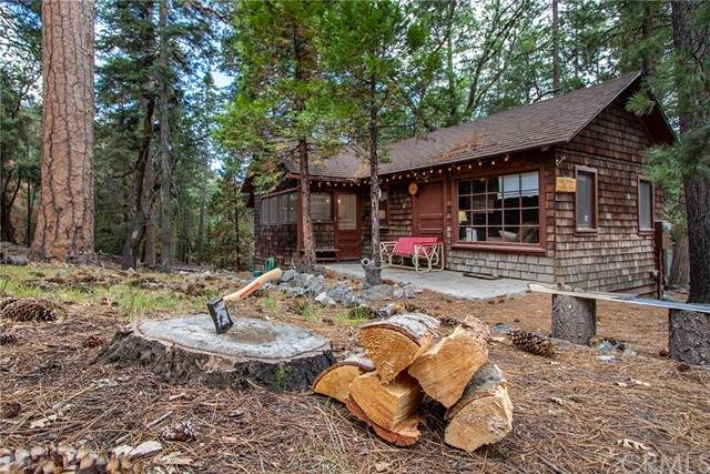 27 Stetson Creek, Angelus Oaks, CA 92305 (#EV21154307) :: Robyn Icenhower & Associates
