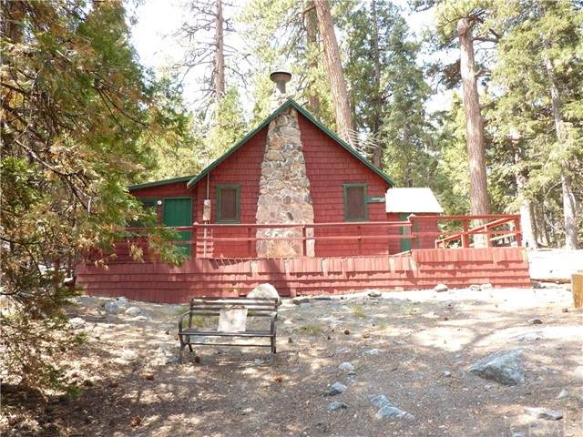 85 Barton Flats, Angelus Oaks, CA 92305 (#EV21156045) :: Robyn Icenhower & Associates