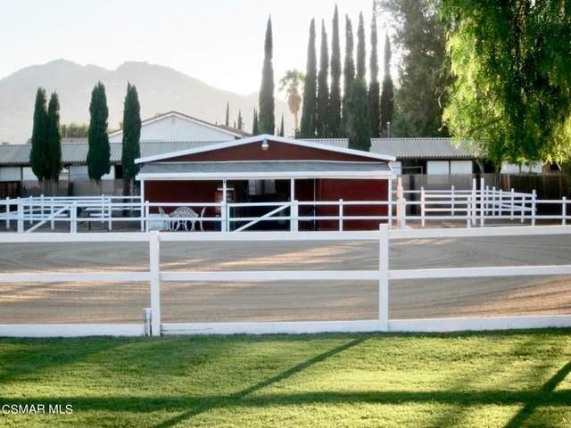 10641 Canoga Avenue, Chatsworth, CA 91311 (#221003939) :: Doherty Real Estate Group